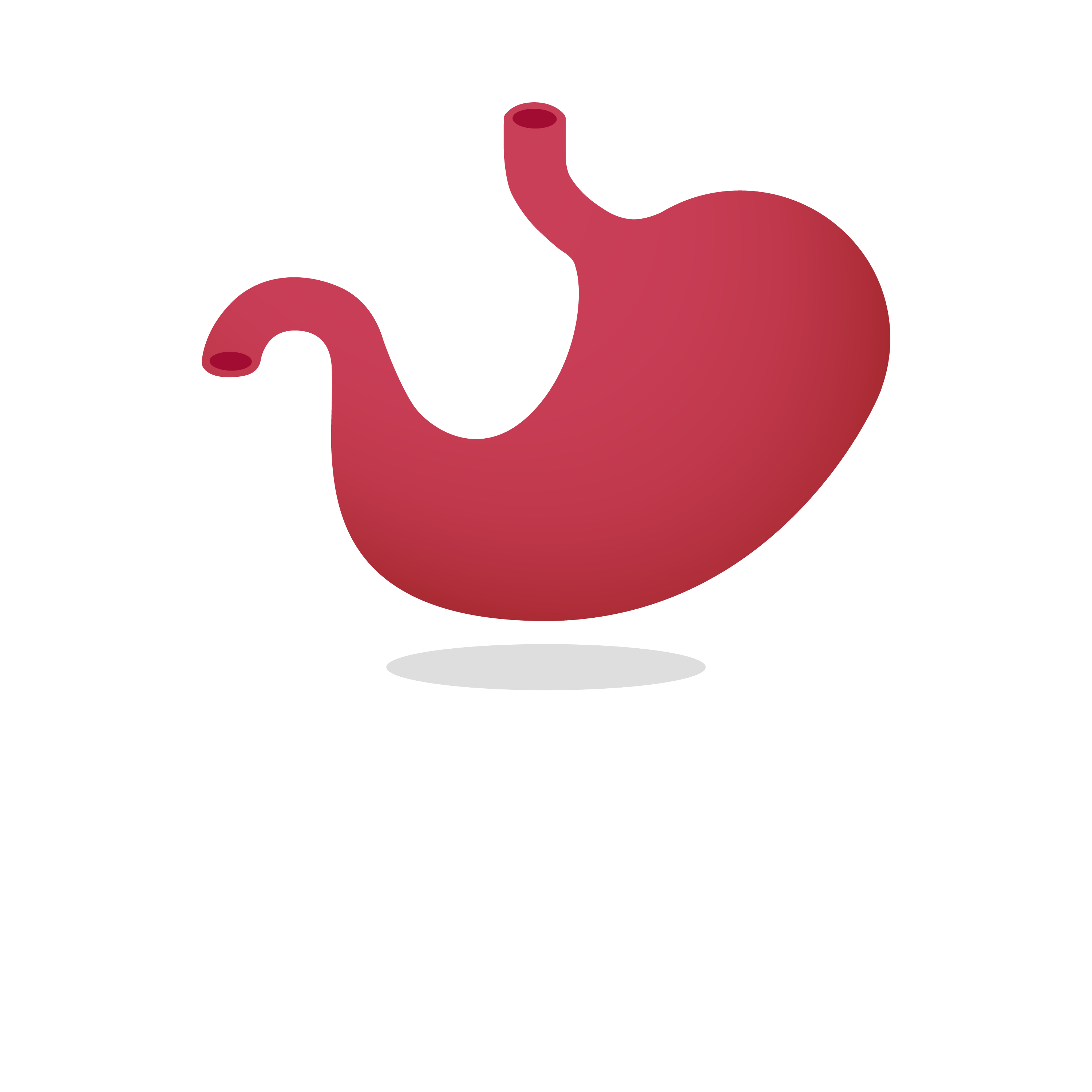 The Abergavenny Dietitian